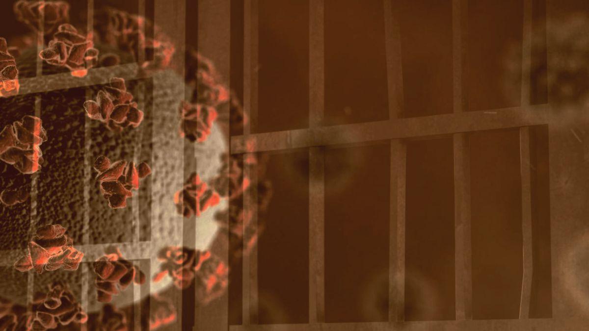 Jails, prisons and coronavirus