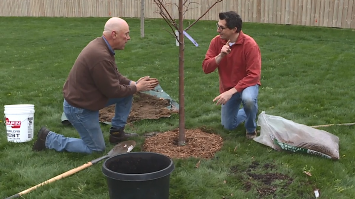 Doug Schroeder and Shawn Cable are planting a tree for Arbor Day 2017