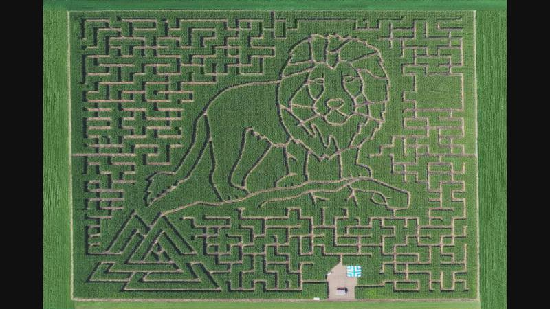 Heartland prides itself on creating unique-looking mazes with this year's design being made in...