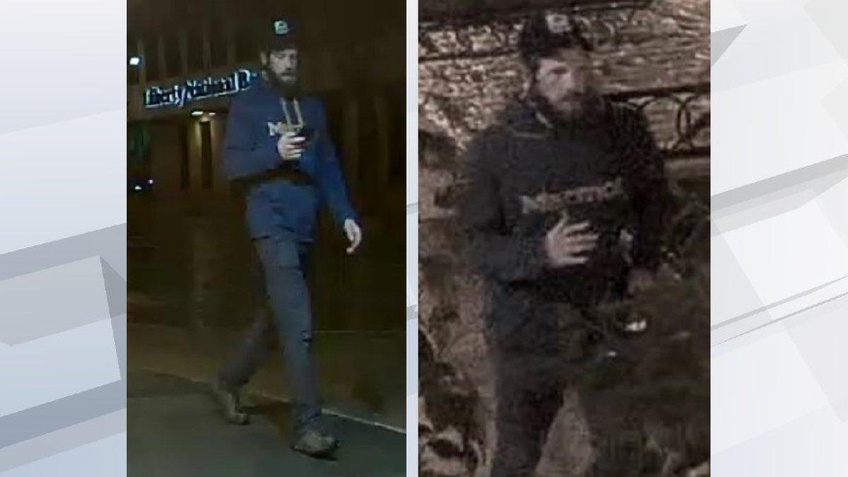 Surveillance images of the suspect in the SculptureWalk vandalism