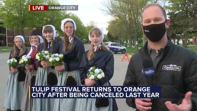 Tulip Festival returns to Orange City for 80th year