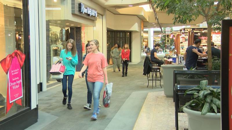 Shoppers were returning items and shopping for sales. (Source: WALB)