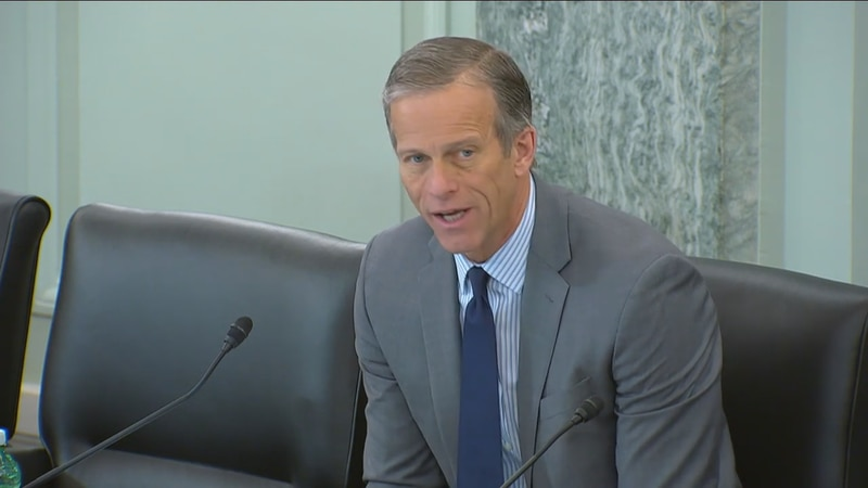 Thune weighing options on reelection ahead of 2022 midterm
