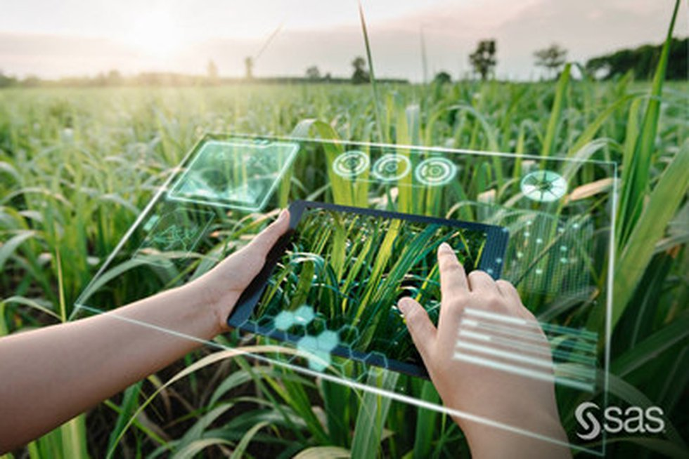 The AgTech sector is ripe for growth and innovation through technologies such as AI, machine...