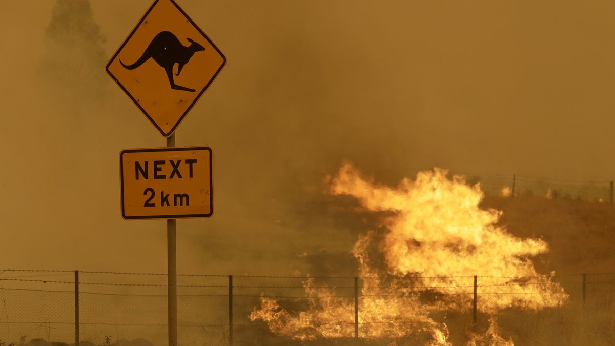 Fire burns in the grass near Bumbalong, south of the Australian capital, Canberra, Saturday,...