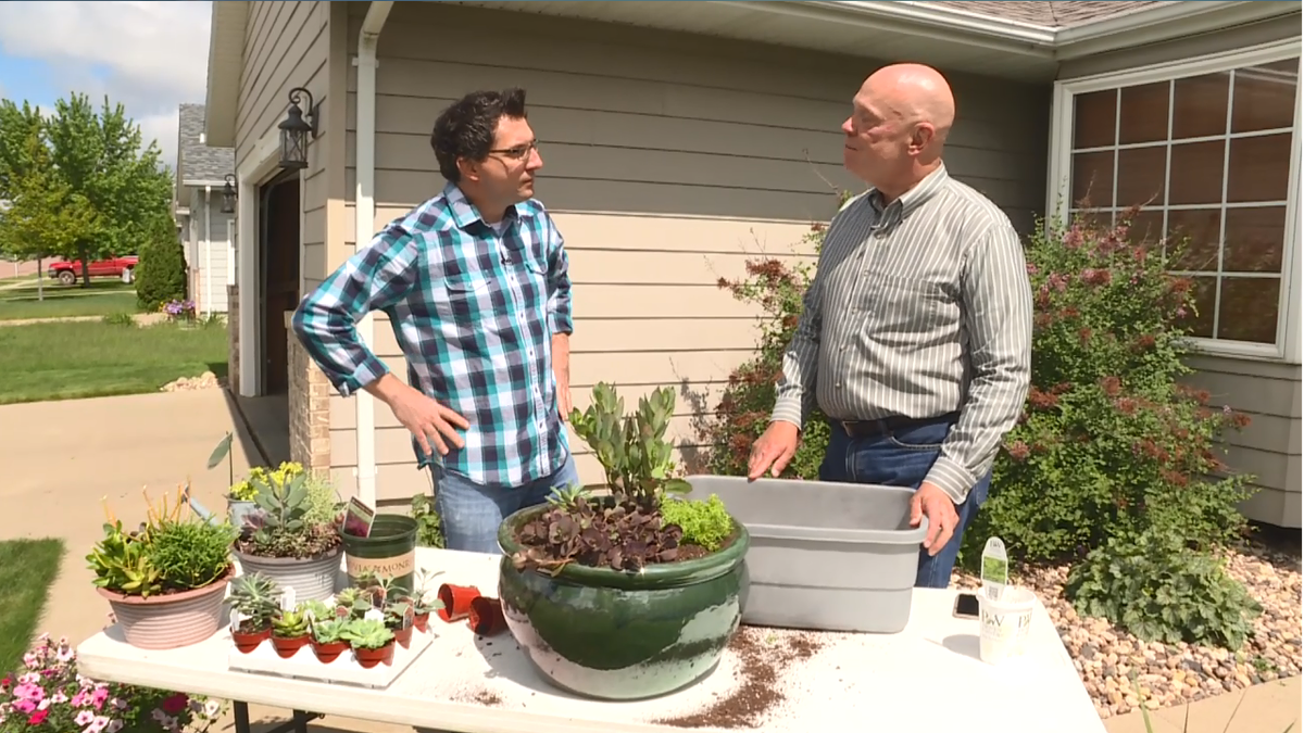 Shawn Cable and Doug Schroeder create a patio container using succulent plants.
