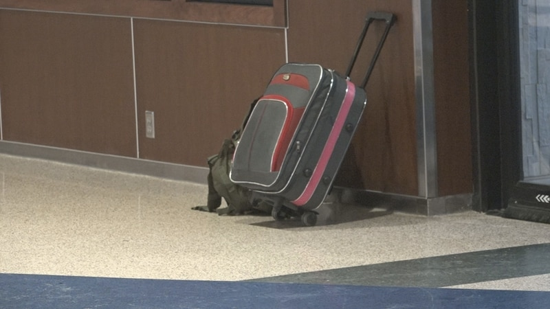 Travel Bag in Sioux Falls Airport