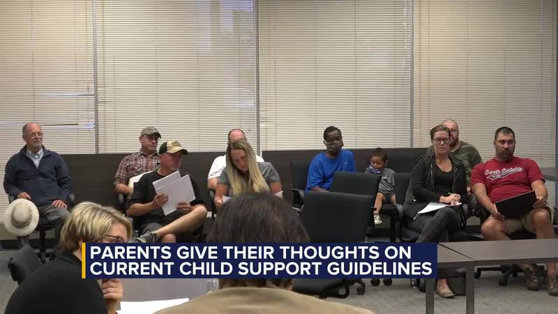 Parents give their input on child support guidelines