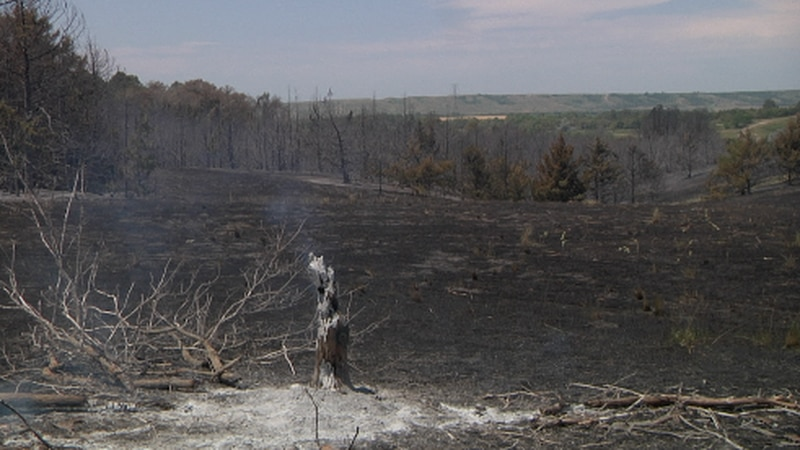 """St. Francis Fire in Pickstown """"95% out"""" after burning over 150 acres"""