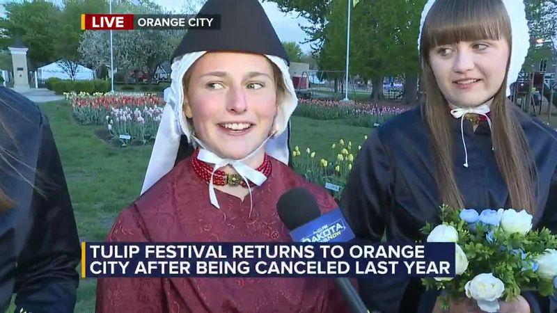 2021 Tulip Festival goes May 13-15th in Orange City